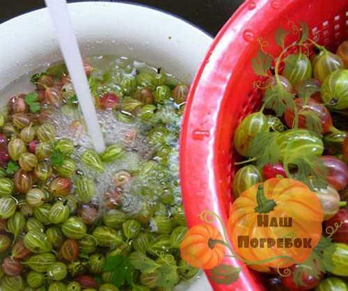 Рецепты домашней наливки из крыжовника на водке и без водки