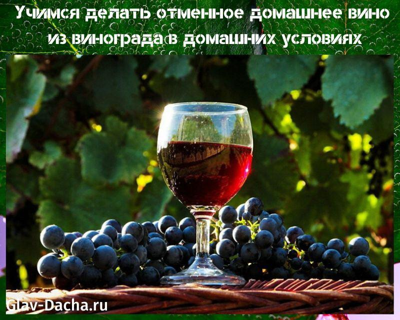 Вино из столового винограда: рецепты в домашних условиях