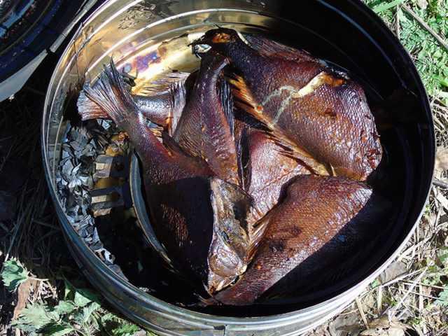 Головы семги горячего копчения рецепт. копчение лосося в домашних условиях. готовим рыбу горячего и холодного копчения