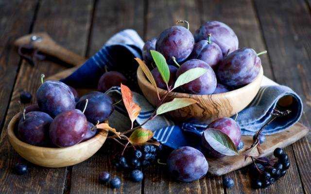 Домашнее вино из сливы: рецепты приготовления лёгких и креплёных напитков