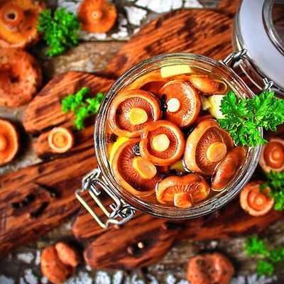 Грибная икра из рыжиков на зиму: фото, рецепты, видео приготовления закуски в домашних условиях