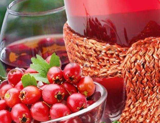 Вино из боярышника – сайт о винограде и вине