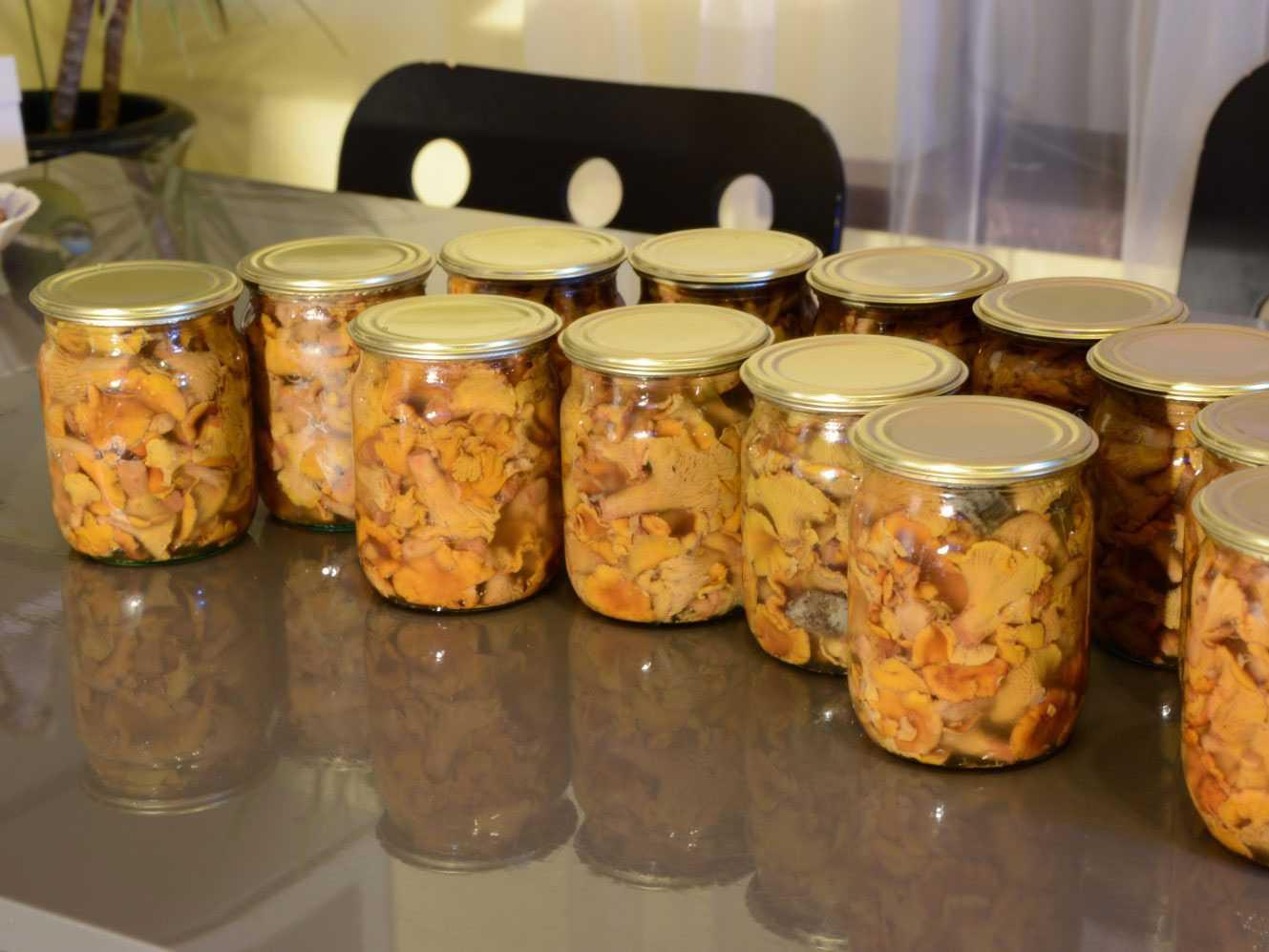 Опята осенние жареные - только лучшие рецепты приготовления в домашних условиях