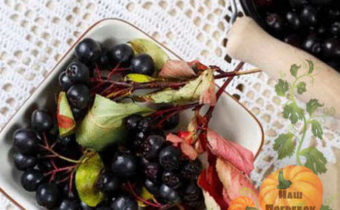 Рецепты варенья из черноплодной рябины: на зиму, с сахаром и без