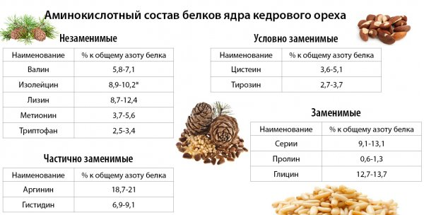 Самогон на кедровых орехах, рецепт напитка