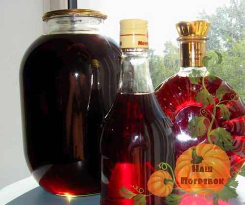 Наливка из черноплодки: 6 рецептов в домашних условиях