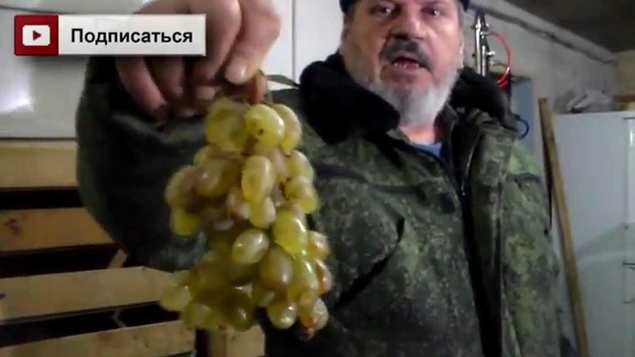 Виноградная чача в домашних условиях