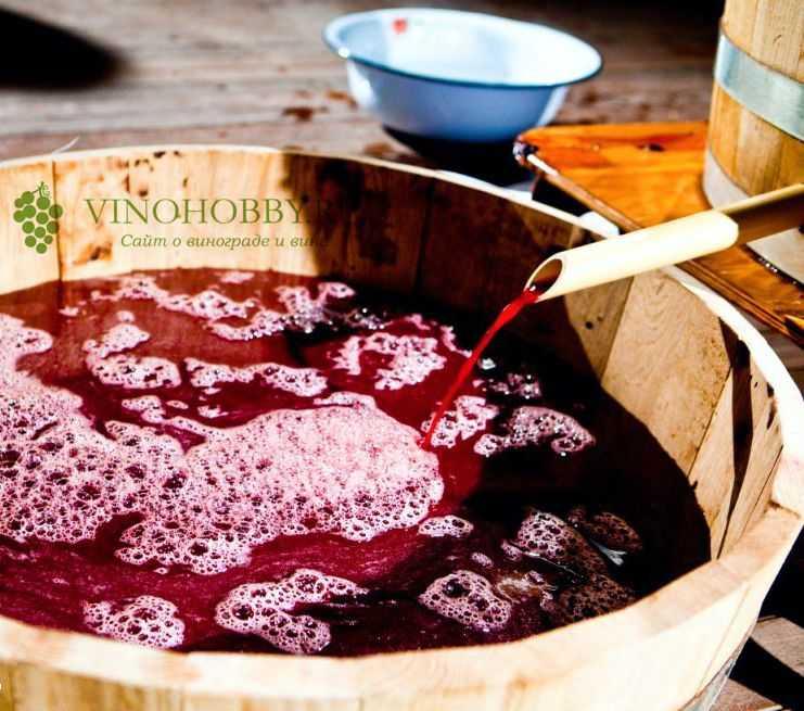 Как сделать чачу из винограда в домашних условиях