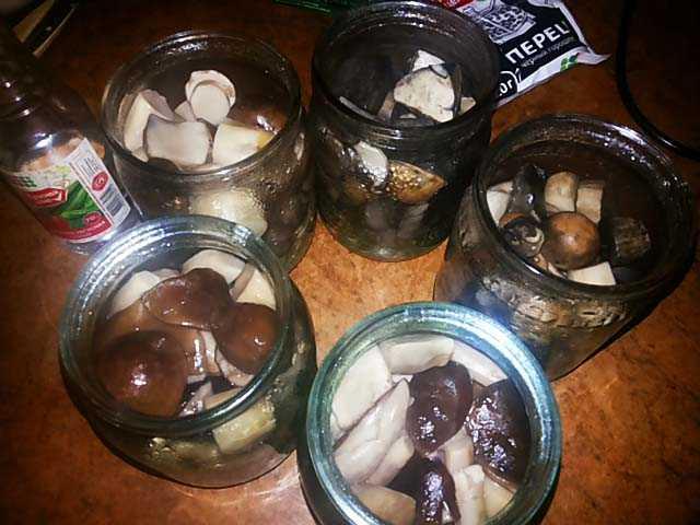 Сколько можно хранить отварные грибы в холодильнике