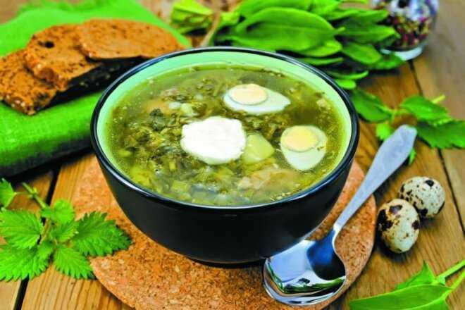 Зеленый борщ со щавелем и яйцом: рецепты пошаговые с фото