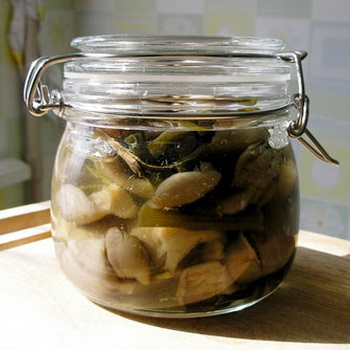 Как мариновать белые грибы на зиму в банках: 5 рецептов приготовления - простой, классический +варианты