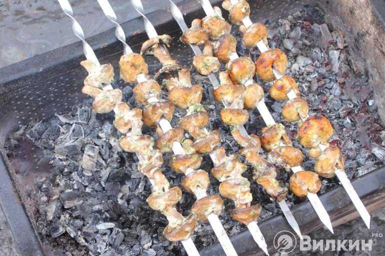 Рецепты шашлыка из грибов
