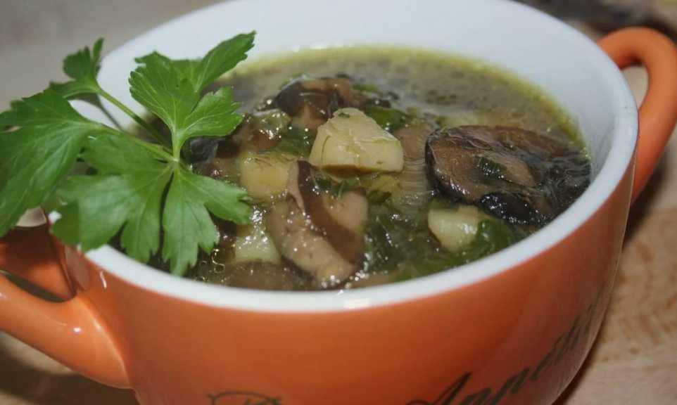 Суп с шиитаке: рецепты с фото в домашних условиях. как лучше с мясом или лапшой?