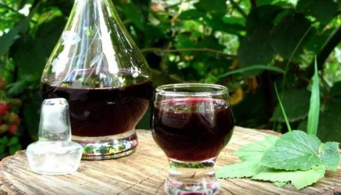 Черносмородиновый ликер — самые вкусные пошаговые рецепты. советы, как приготовить ликер на черной смородине в домашних условиях!