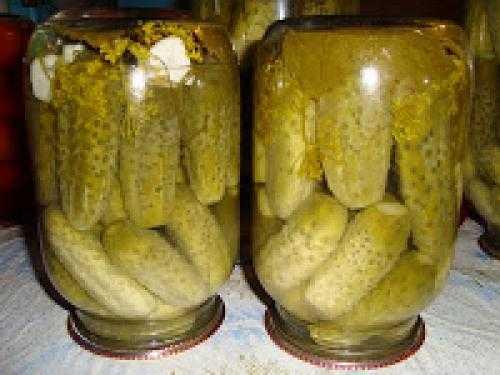 Как мариновать хрустящие огурцы с уксусом: подборка вкуснейших рецептов