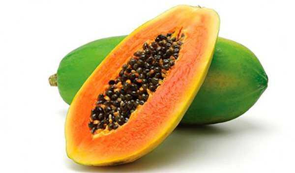 Папайя: польза, вред и калорийность фрукта | food and health