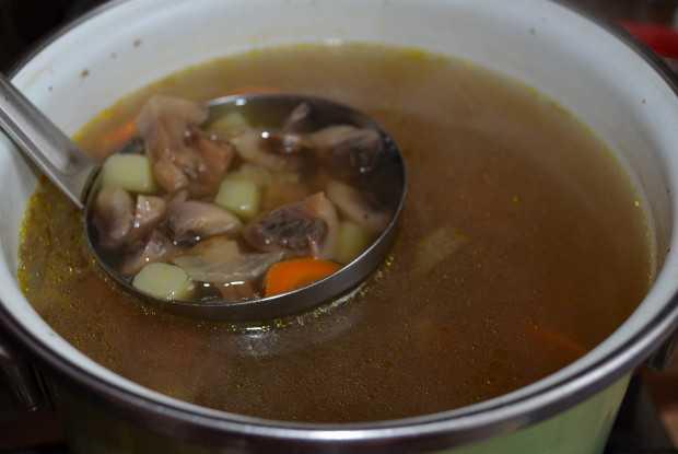 Грибной суп из шампиньонов с вермишелью и картофелем рецепт с фото пошагово - 1000.menu