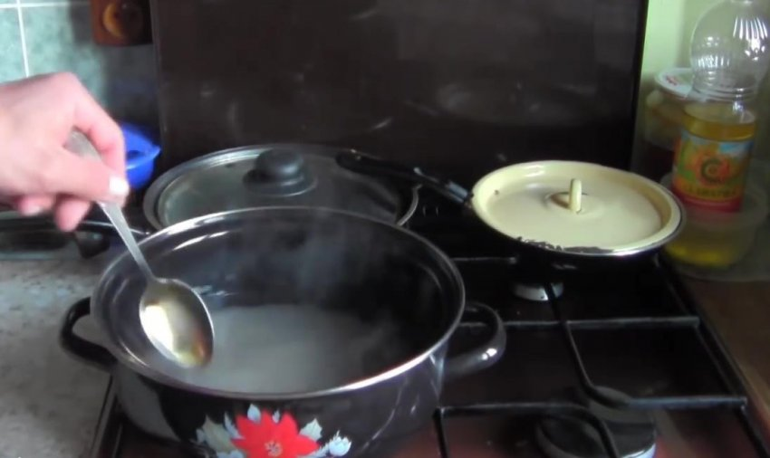 Как сделать сливовицу в домашних условиях? особенности приготовления по рецепту