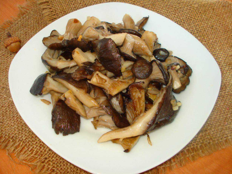 Как жарить вешенки: приготовление грибов на сковороде и в духовке, рецепты с луком, курицей и сметаной