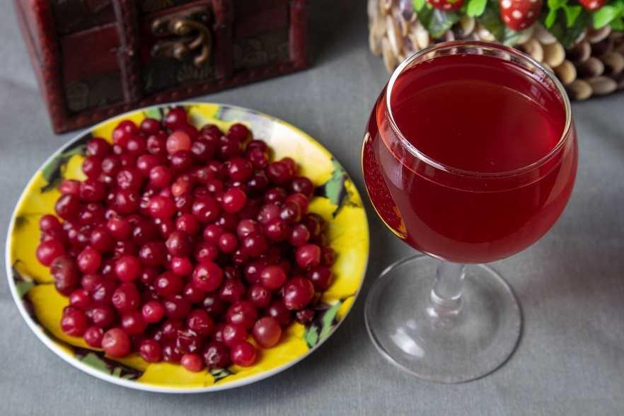 Как готовить вино из клюквы как готовить вино из клюквы