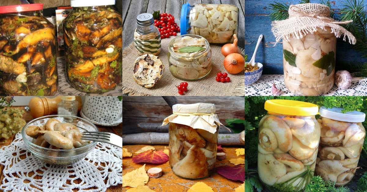 Соленые и маринованные валуи горячим способом: рецепты засолки и маринования грибов на зиму