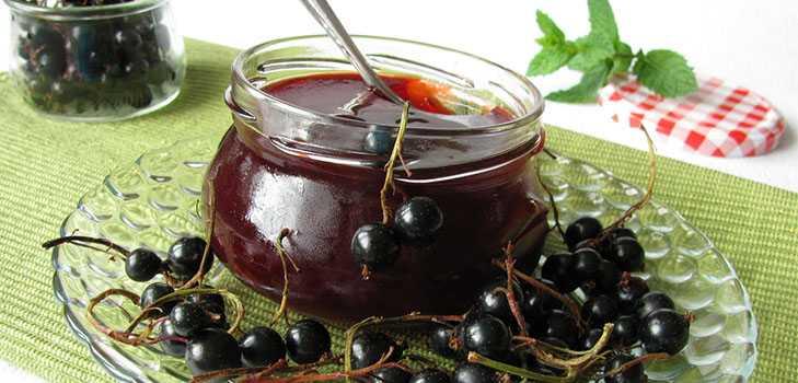 Смородина с сахаром - интересные идеи приготовления вкусных десертов