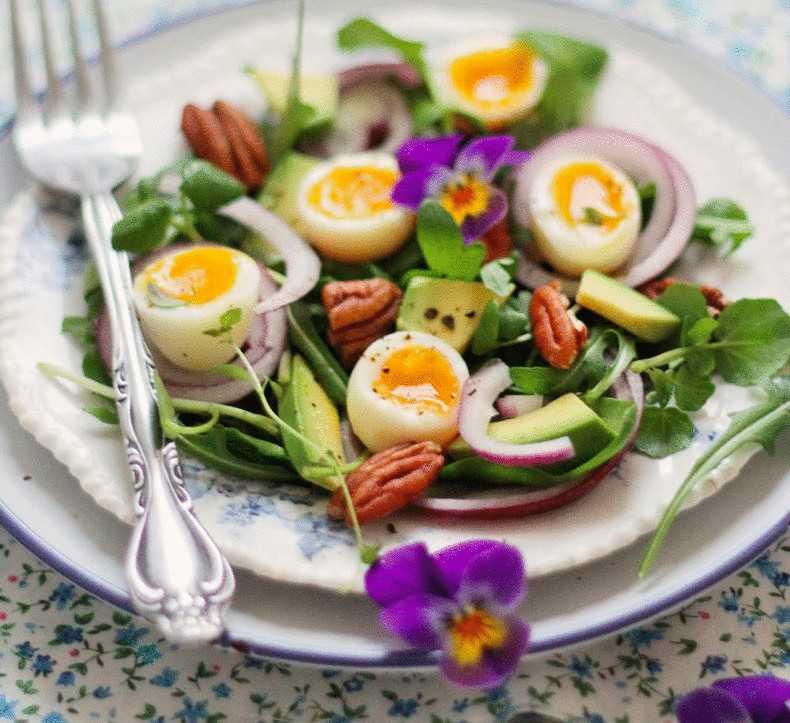 Салаты из яиц — лучшие рецепты. как правильно и вкусно приготовить салат из яиц.