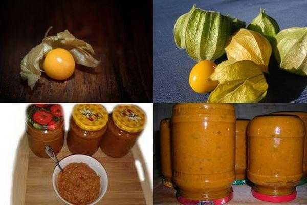Какие заготовки можно сделать из физалиса. блюда и рецепты из овощного и ягодного физалиса.