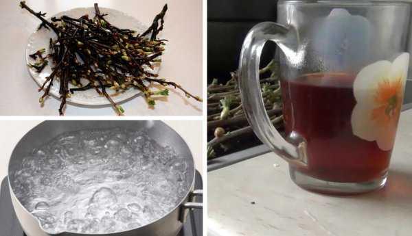 Настойка из черной смородины в домашних условиях: простой рецепт