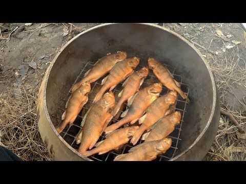 Курица горячего копчения: подготовка, засолка и копчение