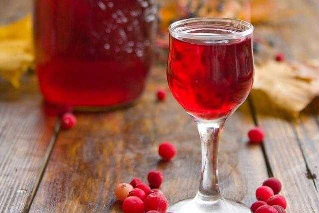 Вино из клюквы: в домашних условиях, простой рецепт, на водке