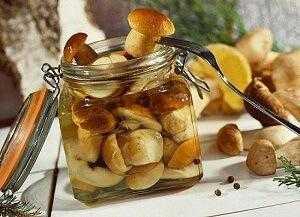 Засолка грибов на зиму в банках в домашних условиях: лучшие рецепты