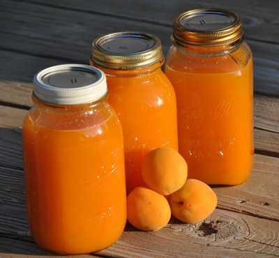 Рецепты абрикосового сока в домашних условиях: с использованием бытовой техники, с мякотью, с лимоном, яблоками, пряностями и без сахара.