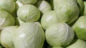 Старинные рецепты квашеной капусты: подробное описание с фото — самый смак