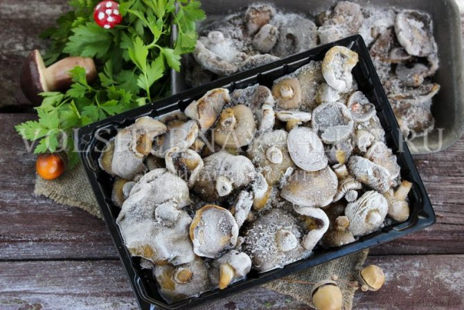 Заготовка рыжиков в домашних условиях на зиму: фото, лучшие рецепты грибной консервации