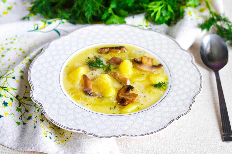 Суп из маслят: рецепты приготовления на свежих, замороженных и сушеных грибах в домашних условиях