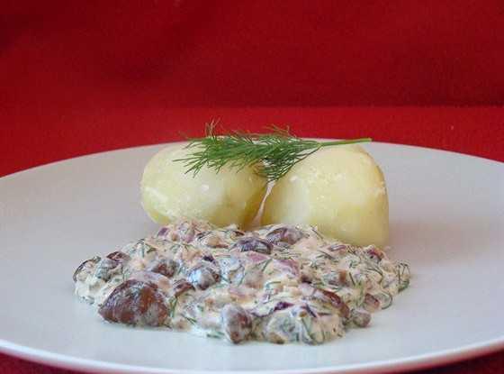 Готовим грибной соус из шампиньонов: просто и очень вкусно