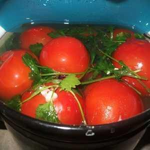 Соленые помидоры на зиму в банках, ведре, кастрюле, пакете