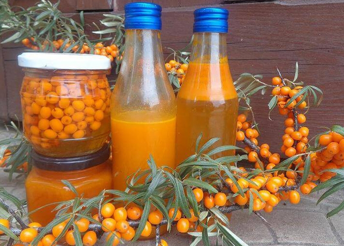 Домашняя настойка из облепихи: рецепт на спирту и водке