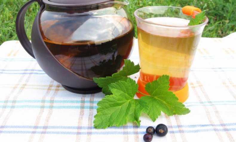 Польза и вред чая из смородины   польза и вред