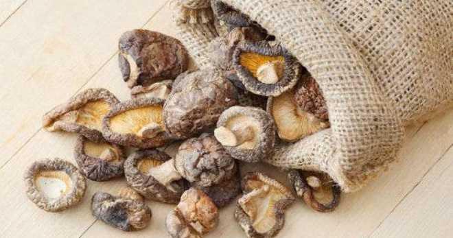 Сушка грибов (4 способа): правила, какие и сколько, как хранить сухие грибы