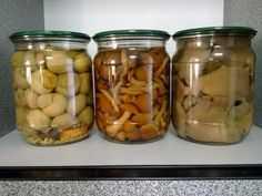 Маринованные грибы срок хранения после консервации