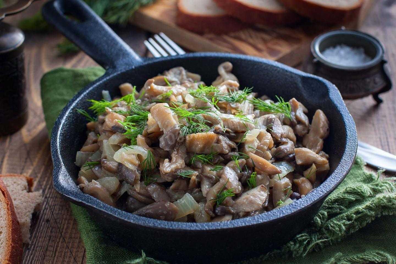 Как приготовить жареные грибы вешенки: рецепты приготовления, фото и видео жарки вешенок