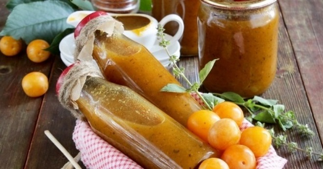 Ткемали: соус из сливы алычи - что это такое, с чем едят, как приготовить ткемали: соус из сливы алычи - что это такое, с чем едят, как приготовить