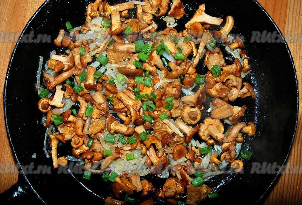 Жареные грибы лисички: как пожарить их с картошкой, луком, со сметаной, на сковороде и другими способами