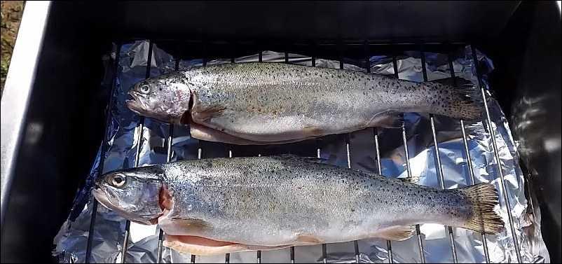 Кета копченая: холодный и горячий методы способы, подготовка, засолка и хранение рыбы