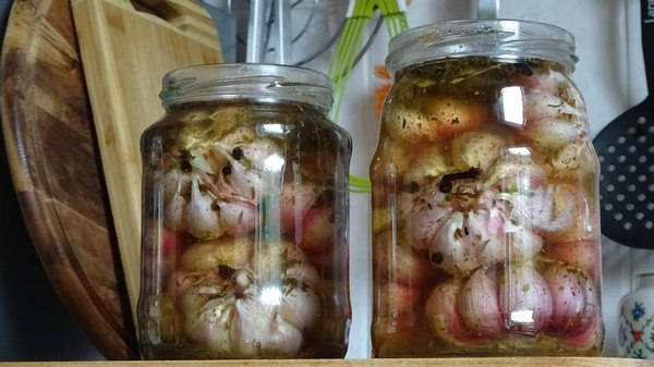 Храним чеснок в растительном масле. рецепт с пошаговыми фото