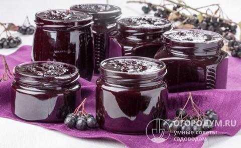 Топ 20 рецептов приготовления заготовок из черноплодной рябины на зиму