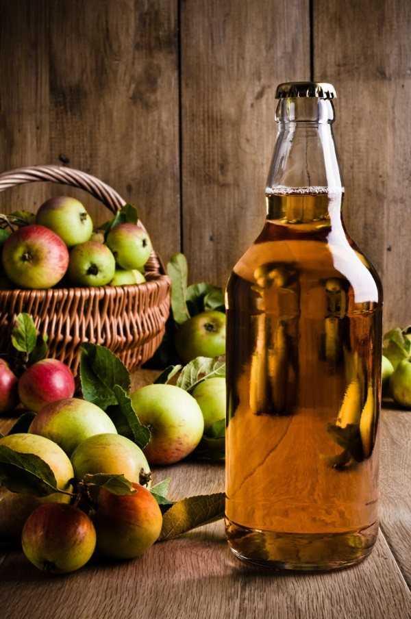 Домашнее яблочное вино — это просто