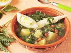 Диетические щи: из свежей капусты, из квашеной, вариант рецепта с курицей и без мясного бульона